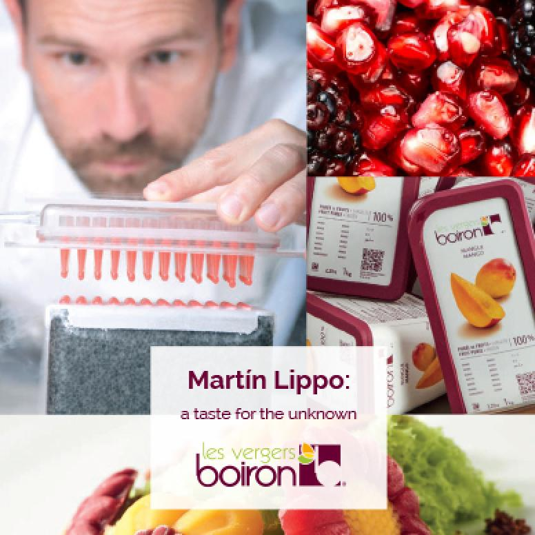 Martin Lippo: a taste for the unknown, the book