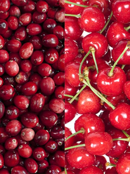 Cranberry & Morello cherry