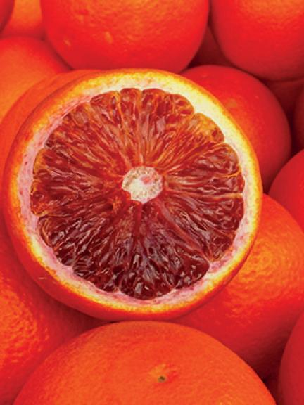 Orange sanguine de Sicile IGP