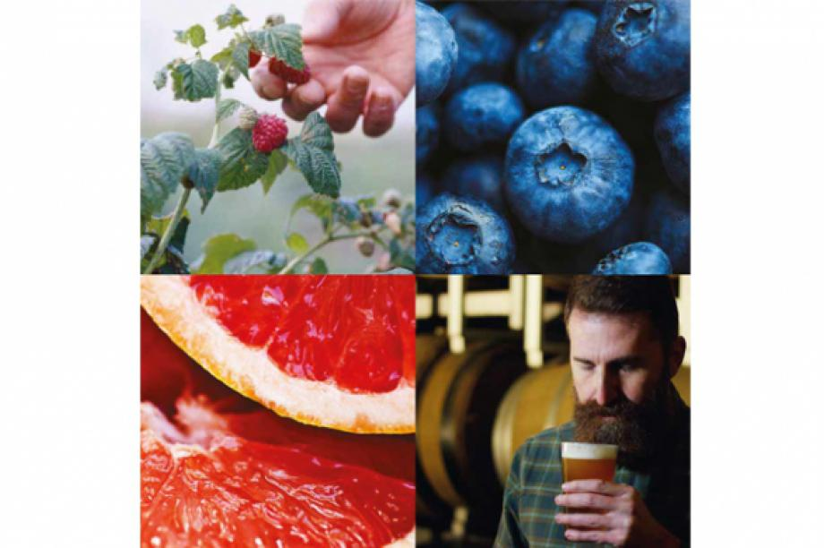 Farm. Fruit. Ferment.