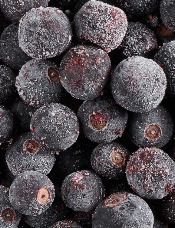 Frozen fruits IQF : Blackcurrant