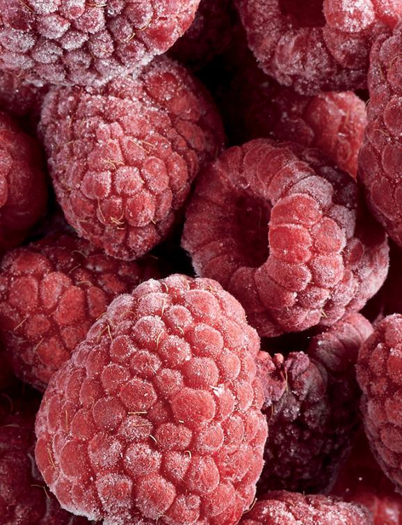 Frozen fruits IQF : Williamette raspberry