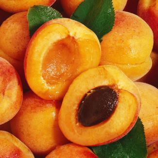 Apricot (Fruits of the orchard)