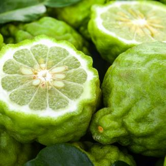 Bergamot (Citrus fruits)