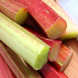 Rhubarb (Fruits of the orchard)