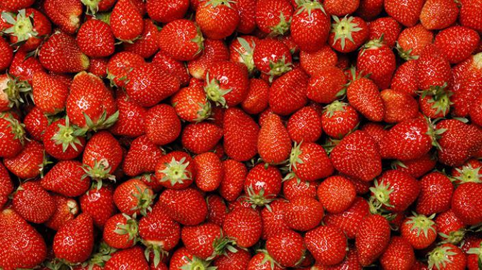 Spirale de sucre de fraises avec crème de mascarpone sur gelée de vin de sureau et sorbet de kiwi et de sureau