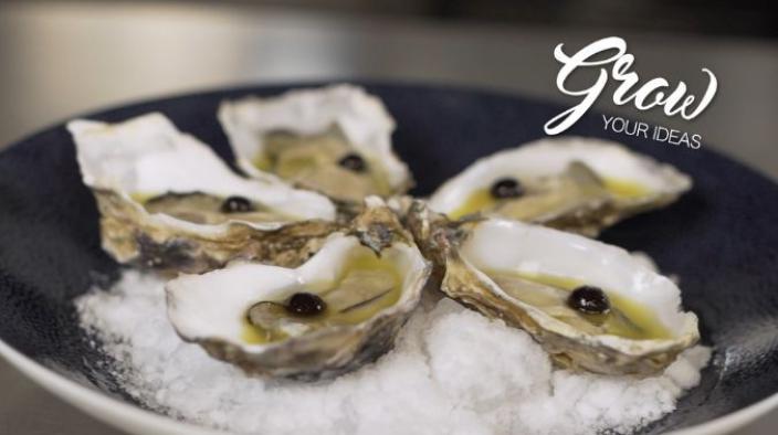 Yuzu oysters