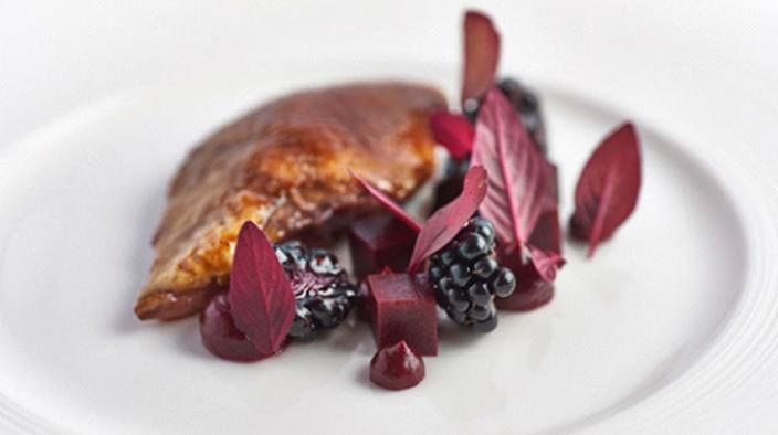 Pigeon with blackberry jam & gelly